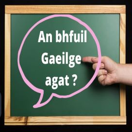 Irish Conversation